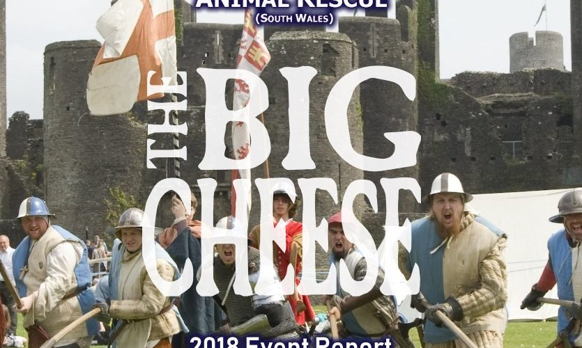 Caerphilly Big Cheese 2018-Event Report